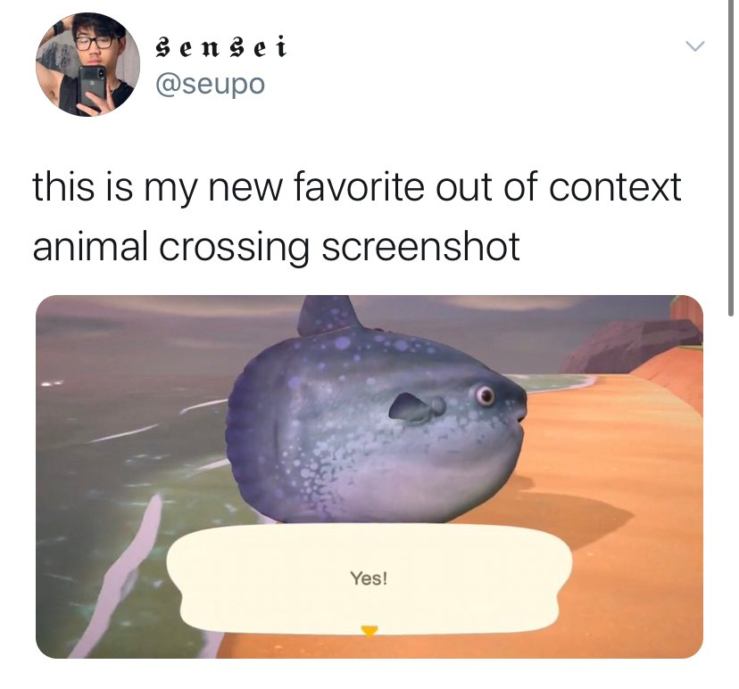 Animal Crossing New Horizons memes, all the best reacitons to the new Switch game, hilarious tweets and videos, funniest Animal Crossing moments