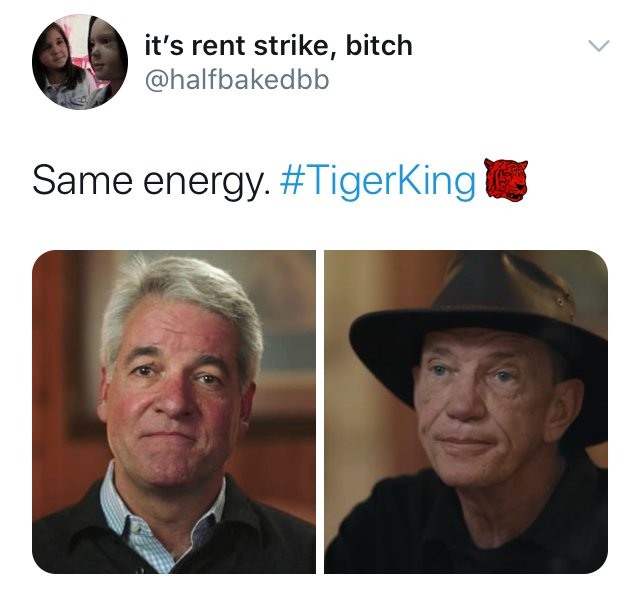 Tiger King, Netflix, memes, meme, reaction, Twitter, Joe Exotic, Carole Baskin, Fyre Festival