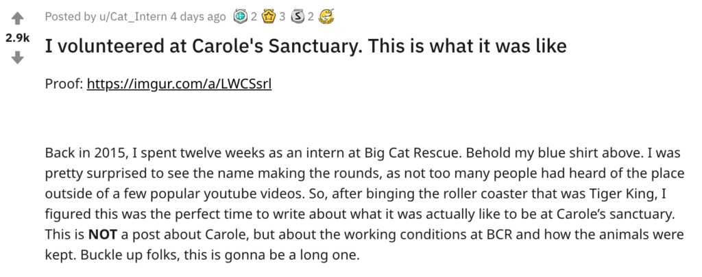 reddit, carole baskin, big cat rescue, sanctuary, intern, volunteer, tiger king, joe exotic