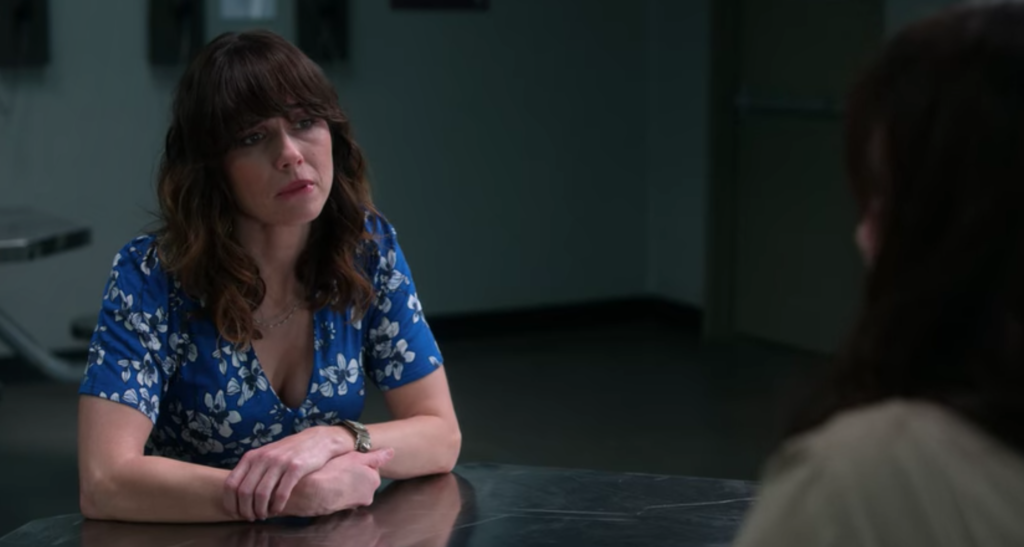 Dead To Me, season two, season three, finale, ending, Judy, explained, Netflix