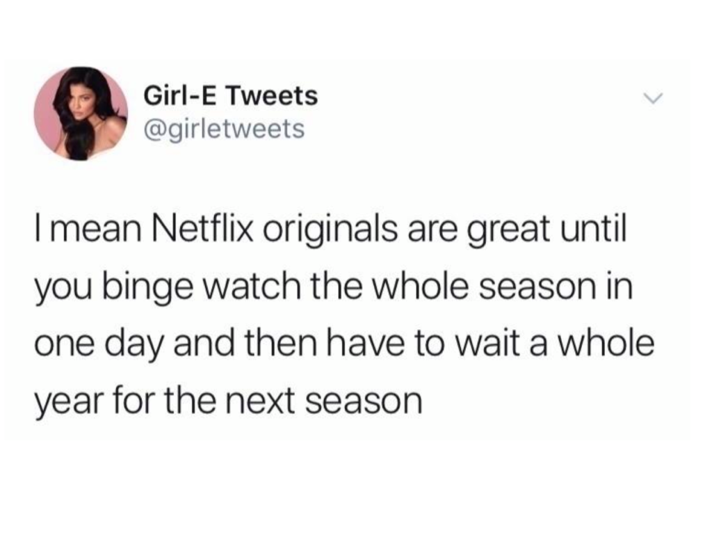Netflix, memes, funny, meme, reaction, originals, seasons