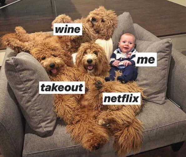 Netflix, memes, funny, meme, reaction, binge, watch
