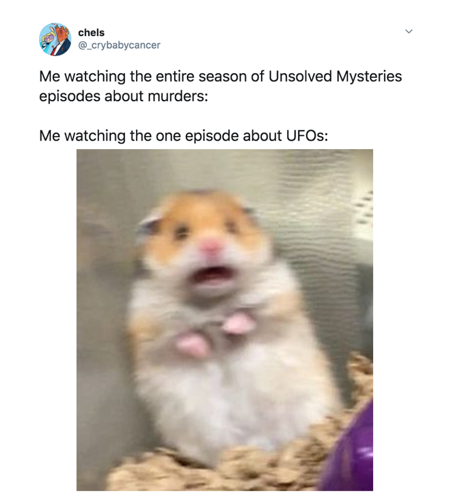 Berkshires UFO, memes, reactions, review, Netflix, episode, five, Unsolved Mysteries, Twitter