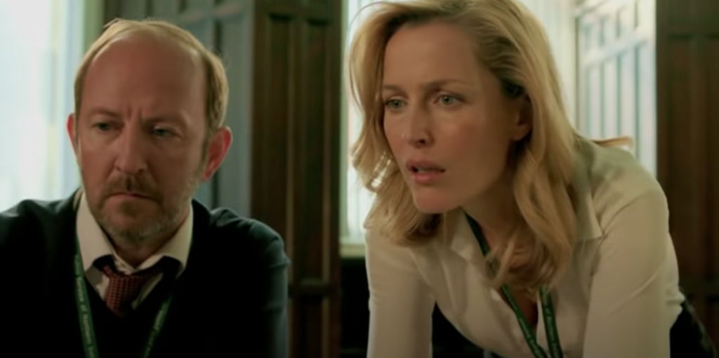 The Fall, reviews, review, Twitter, Netflix, crime, murder, series, plot, about, reactions, Gillian Anderson