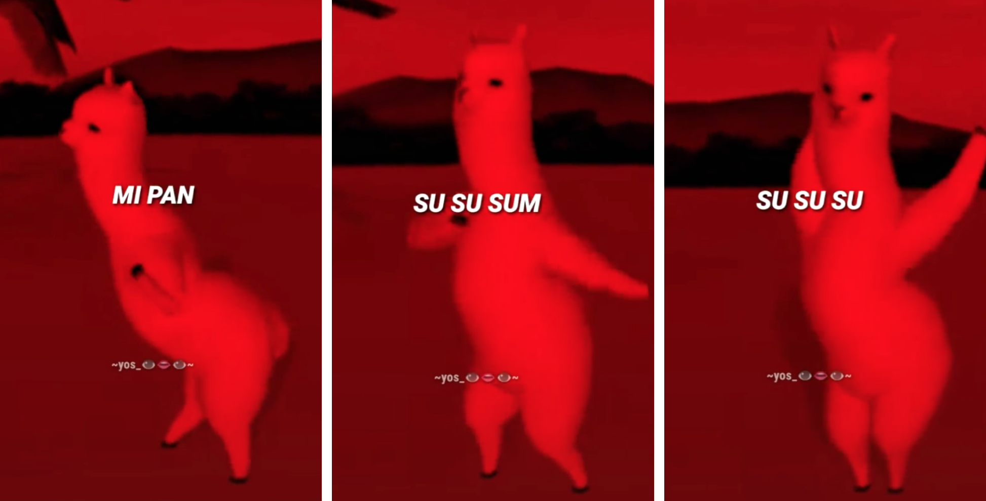 Explained What Does The Mi Pan Su Su Sum Tiktok Song Actually Mean