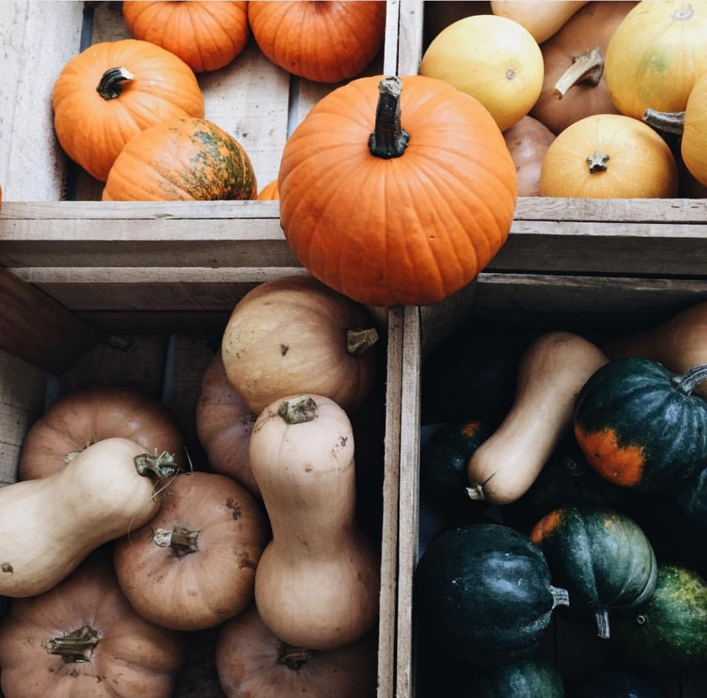 How to make your Instagram perfect this fall