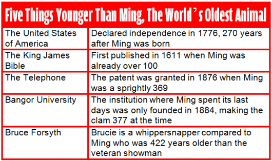 fixed ming infographic