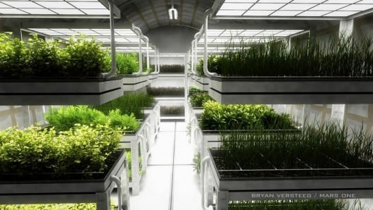 Hydroponics will be used to grow the community's food