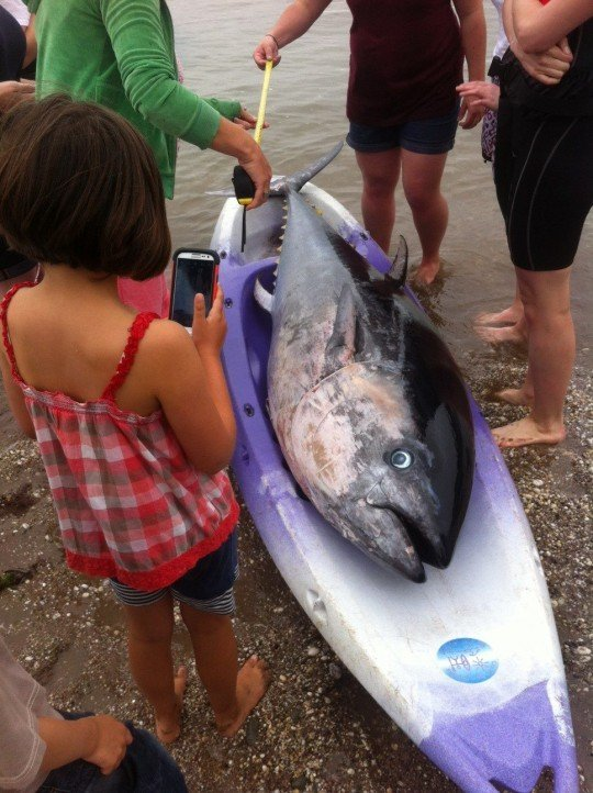 The fish was so big it barely fitted into the girls' kayak