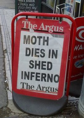 the argus moth dies in shed inferno crazy headline