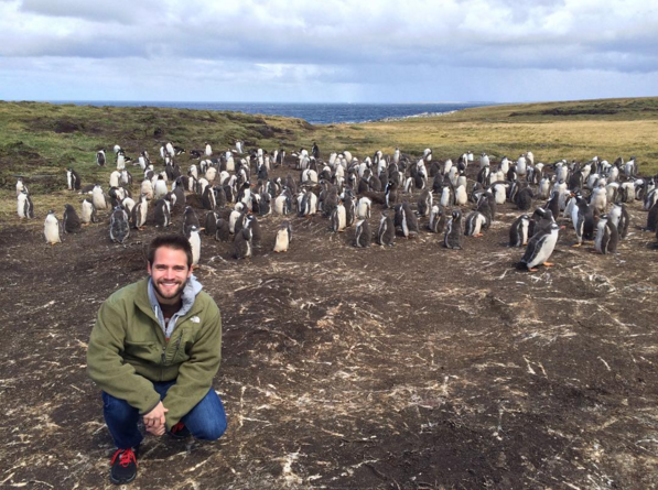 Yeah there's a lot of penguins. Photo: @chadcampbell26